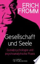 Gesellschaft Und Seele Beitr Ge Zur Sozialpsychologie Und Zur Psychoanalytischen Praxis