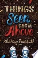 Things Seen from Above Book PDF