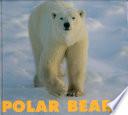 Polar Bears Habitat Life Cycle And Predators