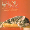 Just Feline Friends