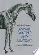 Animal Painting and Anatomy