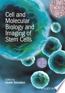 Cell and Molecular Biology and Imaging of Stem Cells