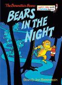 Bears in the Night Book