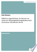 Effektiver Jugendschutz im Internet im Lichte der Meinungsäußerungsfreiheit nach deutschem öffentlichen Recht