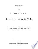 Monograph on the British Fossil Elephants