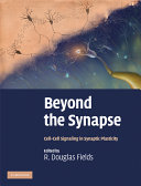 Beyond the Synapse