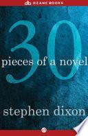 30 Pieces of a Novel