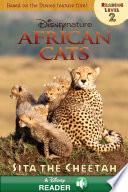 African Cats  Sita the Cheetah