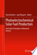 Photoelectrochemical Solar Fuel Production