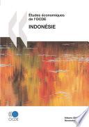Tudes Conomiques De L Ocde Indon Sie 2010