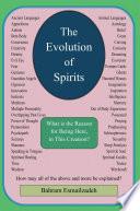 The Evolution of Spirits