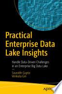 Practical Enterprise Data Lake Insights