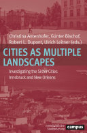 Cities as Multiple Landscapes