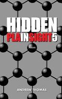 Hidden in Plain Sight 5