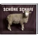 Sch  ne Schafe