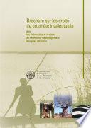 Brochure sur les droits de propriété intellectuelle pour les universités et instituts de recherche-développement des pays africains