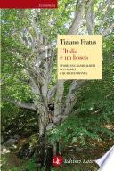 L Italia    un bosco