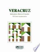 Veracruz Indicadores B Sicos Censales Vii Censos Agropecuarios 1991