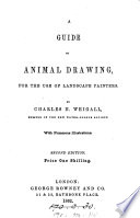 A guide to animal drawing