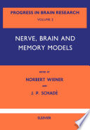 Nerve Brain And Memory Models