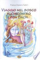 Viaggio nel bosco all'incontro di Bach