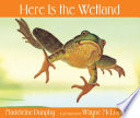 Here Is the Wetland
