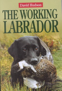 The Working Labrador : is a family pet and also a...