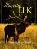 Majestic Elk