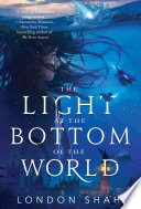 The Light at the Bottom of the World Book PDF