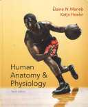 Human Anatomy   Physiology   Anatomy   Physiology Coloring Workbook   A Brief Atlas of the Human Body