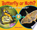 Butterfly or Moth? What Is The Difference? With Colorful