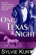 One Texas Night  A Romantic Suspense Novel
