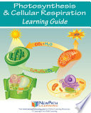 Photosynthesis   Respiration Science Learning Guide