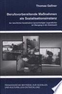 Berufsvorbereitende Massnahmen als Sozialisationsinstanz