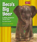 Beco s Big Year