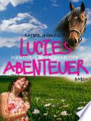 Lucies Abenteuer Sommerfest Mit Hindernissen