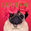 Loulou the Pug