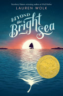 Beyond the Bright Sea Book
