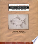 Fishes of the Rio Negro