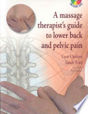 A Massage Therapists  Guide to Lower Back and Pelvic Pain