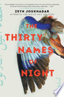 The Thirty Names of Night Book PDF