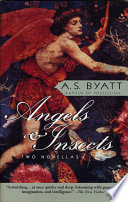 Angels   Insects
