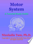 Motor System  A Tutorial Study Guide