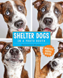Shelter Dogs in a Photo Booth Book Cover