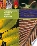 Photographing Pattern   Design in Nature