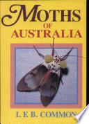 Book Moths of Australia