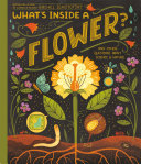 What's Inside A Flower? Book