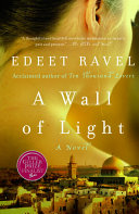 A Wall of Light by Edeet Ravel