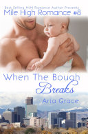 When The Bough Breaks  Mile High Romance  8