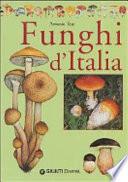 Funghi d Italia
